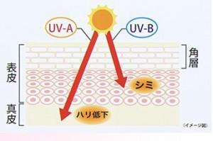 紫外線A波B波