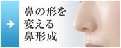 鼻の形を 変える 鼻形成